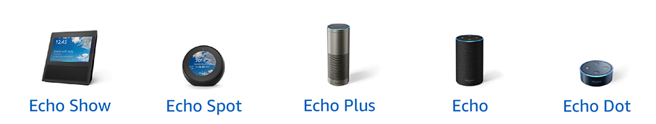 Echo Product Lineup